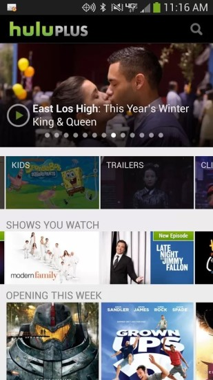 Netflix vs. Hulu Plus: Who best fits your video streaming needs ...