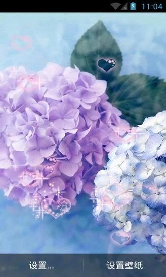 唯美清新花意动态壁纸