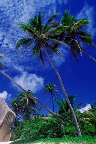 夏威夷风光壁纸