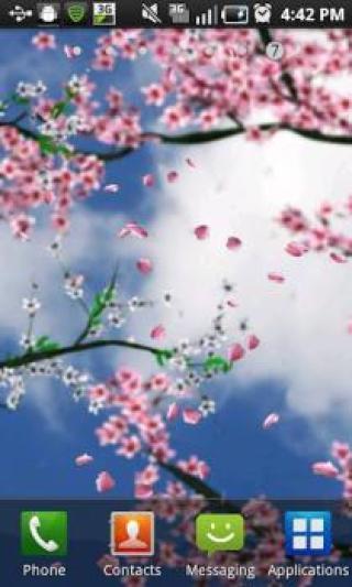 樱花主题壁纸