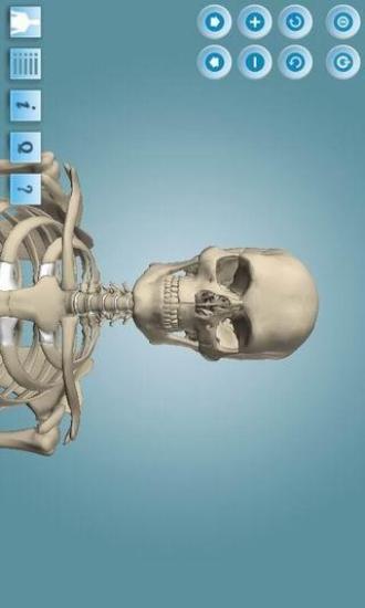 3D人体构造 专业版