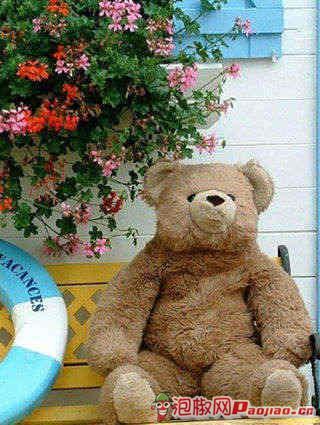 一百年泰迪熊壁纸