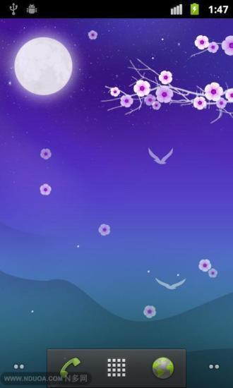 花夜动态壁纸 Blooming Night