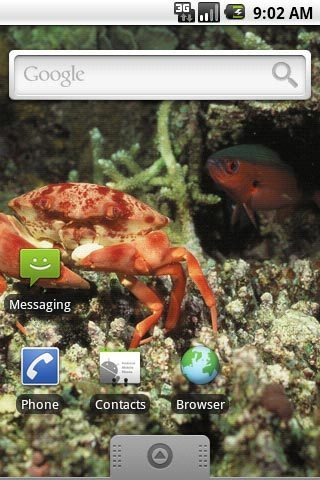 工具必備免費app推薦|海洋生物第一辑主题壁纸線上免付費app下載|3C達人阿輝的APP