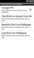 森林鸟类动态壁纸