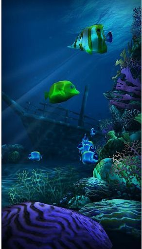 海底世界高清壁纸 Ocean HD v1.3