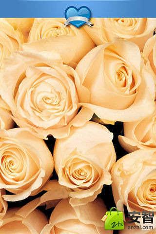 恋爱花语壁纸