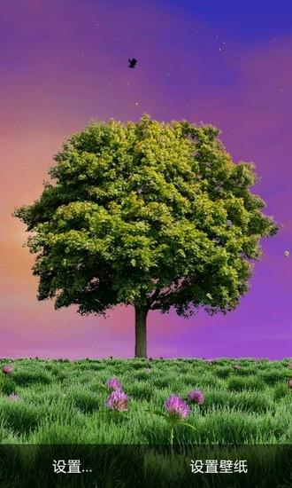 盛夏之树动态壁纸