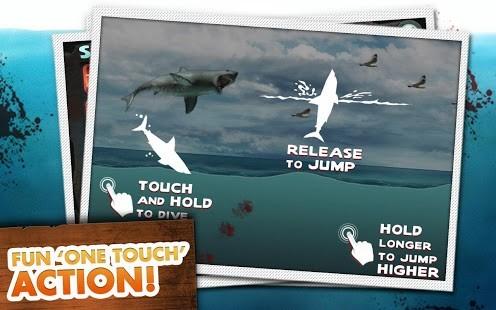 大白鲨的复仇