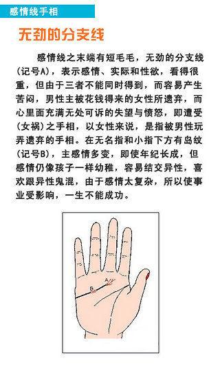 看手相:看看你的指纹