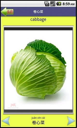 看图识字蔬菜篇
