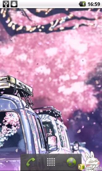 浪漫樱花飘花动态壁纸