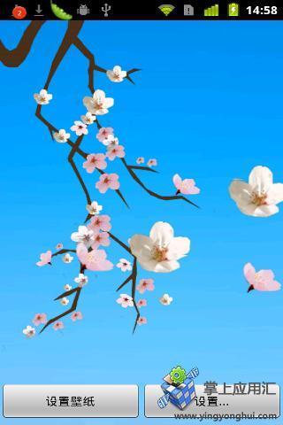 可爱的樱花动态壁纸
