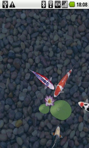 鲤鱼水塘动态壁纸|玩攝影App免費|玩APPs
