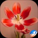 植物摄影安卓版(apk)