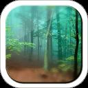 森林动态壁纸安卓版