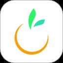 橙宝网安卓版(apk)