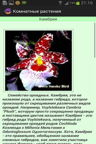 盆栽植物安卓版高清截图