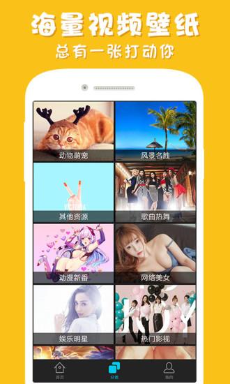 彩蛋视频壁纸安卓版app